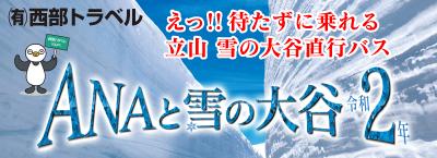 ANAと雪の大谷2